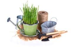 Conceito de jardinagem Foto de Stock