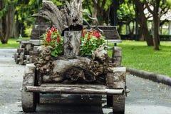 Conceito de jardinagem da decoração Fotos de Stock Royalty Free