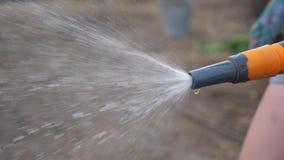 Conceito de jardinagem do cuidado do jardim espirrando o vídeo de movimento lento da água mulher que guarda molhar da mangueira d video estoque