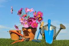 Conceito de jardinagem três Foto de Stock
