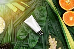 Conceito de produto natural da beleza do skincare, recipientes cosméticos da garrafa no fundo erval verde das folhas imagens de stock