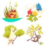 Conceito de projeto da selva dos animais ilustração stock