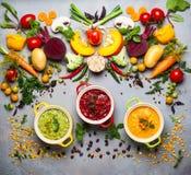 Conceito de sopas vegetais saudáveis Fotos de Stock Royalty Free