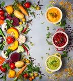 Conceito de sopas vegetais saudáveis Imagens de Stock