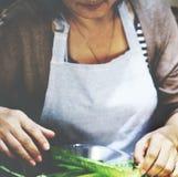Conceito do alimento de Preparation Cooking Healthy da dona de casa Foto de Stock Royalty Free