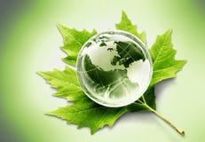 Conceito do ambiente, globo de vidro e folha verde fotografia de stock