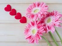 Conceito 23 do amor Imagem de Stock
