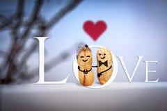 Conceito do amor casamento Data na noite Pares feitos à mão criativos feitos das porcas Foto de Stock Royalty Free