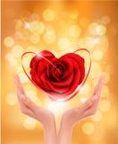 Conceito do amor. guardarando um coração vermelho nas mãos Foto de Stock Royalty Free