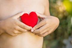 Conceito do amor: mãos do menino que guardam o coração vermelho Imagens de Stock