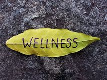 Conceito do bem-estar escrito na folha imagem de stock royalty free