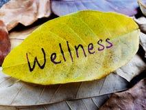 Conceito do bem-estar escrito na folha imagens de stock royalty free
