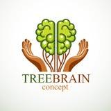 Conceito do cérebro da árvore, a sabedoria da natureza, evolução inteligente ilustração royalty free