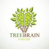 Conceito do cérebro da árvore, a sabedoria da natureza, evolução inteligente ilustração stock