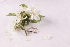 Conceito do casamento com flores da Apple-árvore fotos de stock royalty free