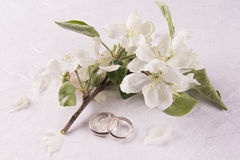 Conceito do casamento com flores da Apple-árvore fotografia de stock royalty free