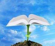 Conceito do conhecimento Foto de Stock