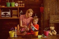Conceito do cuidado Mãe da ajuda da criança pequena a importar-se com plantas A planta da mãe e do filho floresce com cuidado Tom foto de stock royalty free