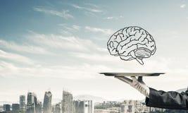 Conceito do desenvolvimento das capacidades da mente Fotografia de Stock