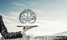 Conceito do desenvolvimento das capacidades da mente Foto de Stock