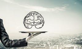 Conceito do desenvolvimento das capacidades da mente Fotografia de Stock Royalty Free