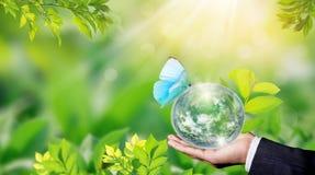 Conceito do dia de ambiente de mundo com planta??o de ?rvores e terra verde em oferecer as m?os imagens de stock