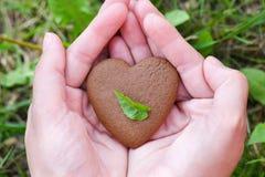 Conceito do dia do ` s do amor e do Valentim m?o masculina na forma do cora??o no fundo do campo de grama verde fotografia de stock royalty free