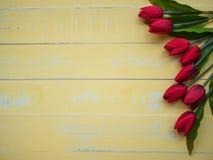 Conceito do dia do ` s da matriz flor das tulipas na parte traseira de madeira amarela pastel Fotos de Stock Royalty Free