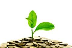 Conceito do dinheiro da economia com a pilha da moeda do dinheiro isolada no CCB branco Imagens de Stock Royalty Free