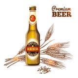 Conceito do esboço da cerveja Foto de Stock