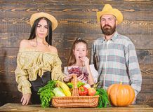 Conceito do festival da colheita Fazendeiros da fam?lia com fundo de madeira da colheita Os pais e a filha comemoram o feriado da imagens de stock royalty free