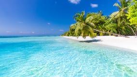 Conceito do fundo do curso do feriado das férias do turismo da praia do verão Mulher idílico romântica de relaxamento da felicida Foto de Stock