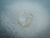 Conceito do mundo de fantasia da estação de feriados do inverno: Imagem macro de testes padrões de Frosty Window Glass Natural Ic fotografia de stock royalty free