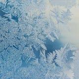 Conceito do mundo de fantasia da estação de feriados do inverno: Imagem macro de um conceito do mundo de fantasia da estação de f imagens de stock