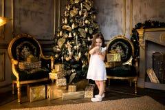 Conceito do Natal Ano novo As crianças vestem acima uma árvore de Natal foto de stock royalty free