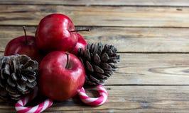 Conceito do Natal: maçãs, ramos do abeto e cones vermelhos Imagem de Stock