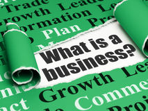 Conceito do negócio: texto preto o que é um negócio? sob a parte de papel rasgado Fotografia de Stock