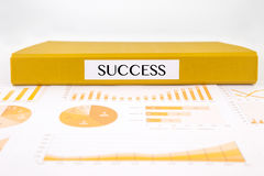Conceito do sucesso com originais, gráficos, cartas e relatório comercial da análise Imagem de Stock