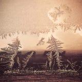 Conceito do tema do mundo de fantasia da estação do inverno: Imagem macro de testes padrões claros coloridos de Frosty Window Gla fotos de stock