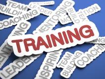 Conceito do treinamento. Fotografia de Stock