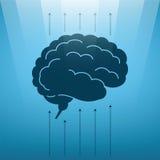 Conceito do vetor do cérebro humano crescente Fotografia de Stock Royalty Free