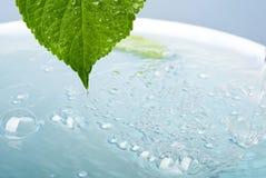 Conceito do Wellness com folha e banho Foto de Stock Royalty Free
