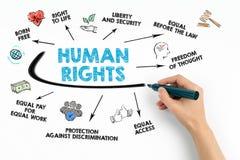 Conceito dos direitos humanos Carta com palavras-chaves e ícones fotografia de stock