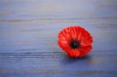 Conceito dos EUA Memorial Day Imagens de Stock
