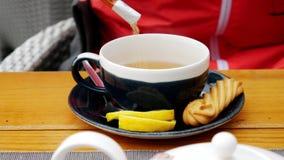 Conceito dos povos e das bebidas - mãos da mulher que derramam o açúcar ao copo do chá no café vídeos de arquivo