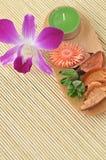 Conceito dos termas: Flor da orquídea Imagens de Stock Royalty Free