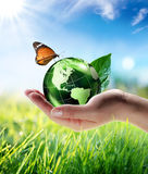 Conceito Eco-amigável Fotos de Stock Royalty Free