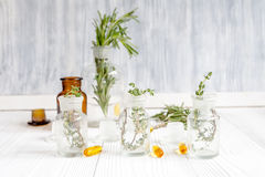 Conceito - ervas naturais da medicina em umas garrafas no fundo de madeira Fotografia de Stock Royalty Free