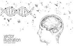 Conceito esperto do negócio do Q.I. do cérebro humano Braingpower nootropic da neurociência da medicina do ADN do suplemento à dr ilustração stock
