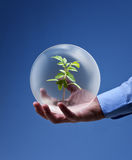 Conceito a favor do meio ambiente do negócio Imagem de Stock